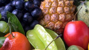 Programa de saúde vegetal é o foco da UPL no PMA Fresh Connections 2019, em São Paulo