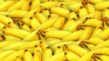 Saúde vegetal: UPL leva soluções para banana, manga e mamão ao Abanorte Fruit Connections, em Janaúba (MG)